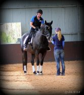 Clicker training lessons and clinics